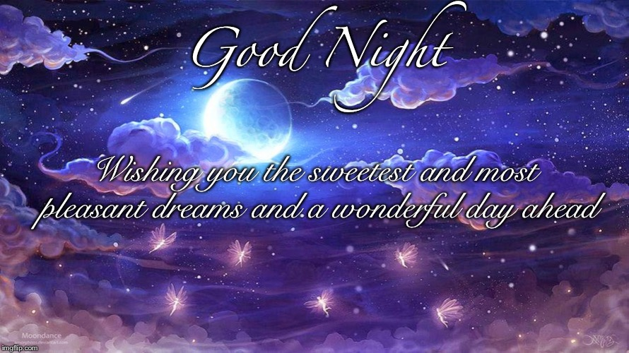 Good Night | Good Night Wishing you the sweetest and most pleasant dreams and a wonderful day ahead | image tagged in good night,sweet dreams,good,night,sweet,dreams | made w/ Imgflip meme maker
