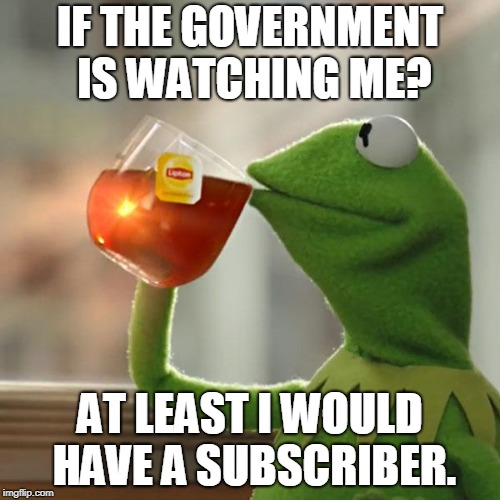 They are Watching....  | IF THE GOVERNMENT IS WATCHING ME? AT LEAST I WOULD HAVE A SUBSCRIBER. | image tagged in memes,but thats none of my business,kermit the frog,government,youtube,subscribe | made w/ Imgflip meme maker