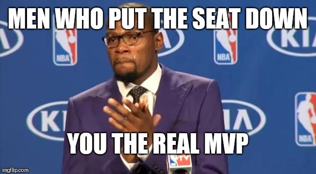 You The Real MVP Meme | MEN WHO PUT THE SEAT DOWN YOU THE REAL MVP | image tagged in memes,you the real mvp | made w/ Imgflip meme maker