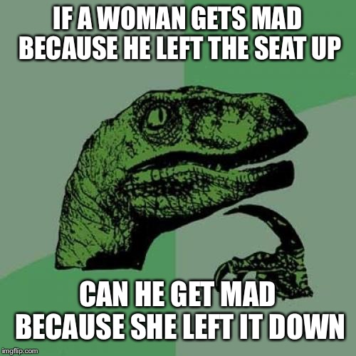 Philosaraptor |  IF A WOMAN GETS MAD BECAUSE HE LEFT THE SEAT UP; CAN HE GET MAD BECAUSE SHE LEFT IT DOWN | image tagged in philosaraptor | made w/ Imgflip meme maker