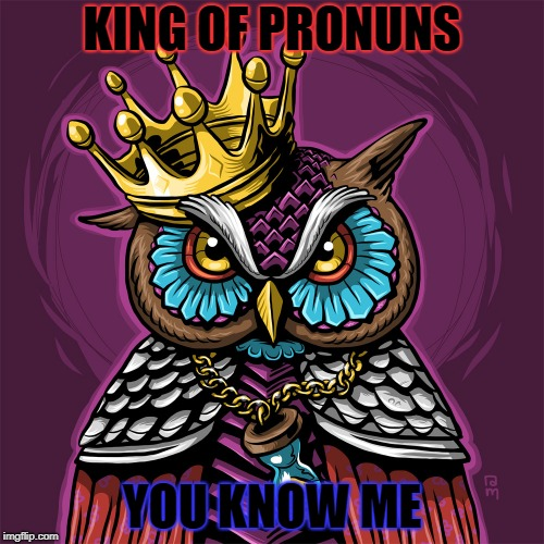 King of Pronouns | KING OF PRONUNS YOU KNOW ME | image tagged in owls | made w/ Imgflip meme maker