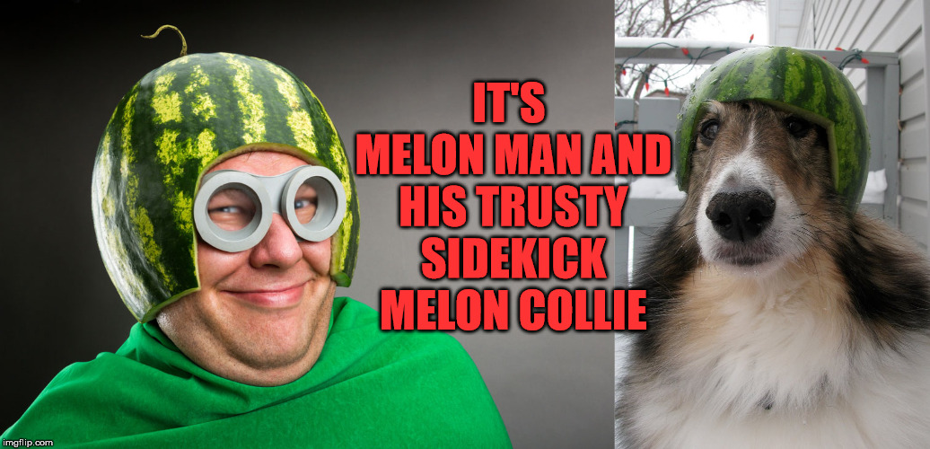 Not since Blue Falcon and Dynomutt has there been such an awesome pairing. | IT'S MELON MAN AND HIS TRUSTY SIDEKICK MELON COLLIE | image tagged in memes,superheroes,bad pun,funny,melons,partners in crime | made w/ Imgflip meme maker
