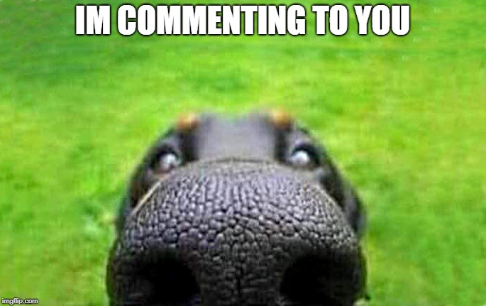 upvote | IM COMMENTING TO YOU | image tagged in upvote | made w/ Imgflip meme maker