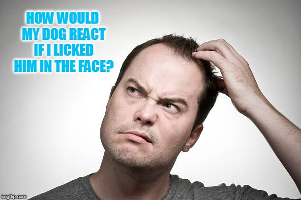 I mean, he shouldn't mind, right?  | HOW WOULD MY DOG REACT IF I LICKED HIM IN THE FACE? | image tagged in confused,nixieknox,memes | made w/ Imgflip meme maker