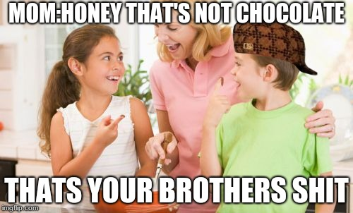 Frustrating Mom |  MOM:HONEY THAT'S NOT CHOCOLATE; THATS YOUR BROTHERS SHIT | image tagged in memes,frustrating mom | made w/ Imgflip meme maker