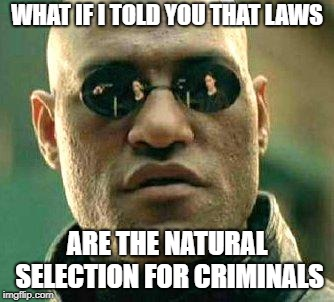 What if i told you | WHAT IF I TOLD YOU THAT LAWS ARE THE NATURAL SELECTION FOR CRIMINALS | image tagged in what if i told you | made w/ Imgflip meme maker