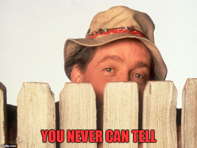 Wilson Home Improvement | YOU NEVER CAN TELL | image tagged in wilson home improvement | made w/ Imgflip meme maker