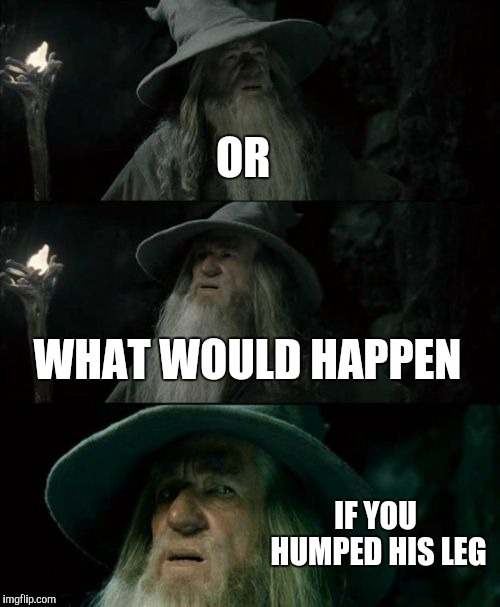 Confused Gandalf Meme | OR WHAT WOULD HAPPEN IF YOU HUMPED HIS LEG | image tagged in memes,confused gandalf | made w/ Imgflip meme maker