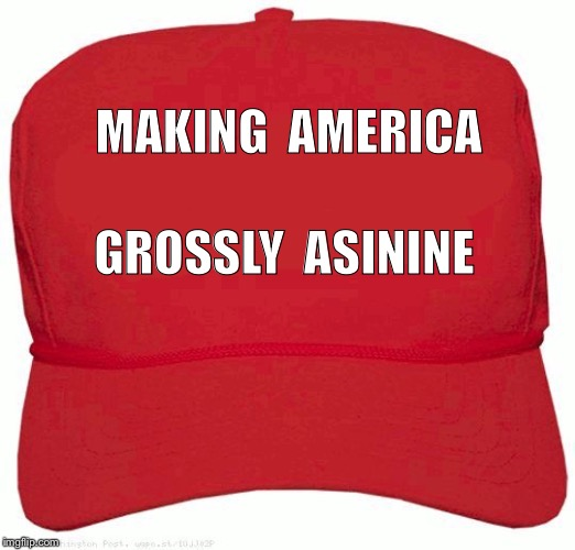 MAGA | MAKING  AMERICA GROSSLY  ASININE | image tagged in red hat | made w/ Imgflip meme maker