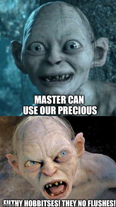 When you let a stranger use your restroom... | MASTER CAN USE OUR PRECIOUS FILTHY HOBBITSES! THEY NO FLUSHES! | image tagged in memes,gollum,smeagol,toilet,potty,poop | made w/ Imgflip meme maker