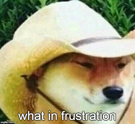What in tarnation | what in frustration | image tagged in what in tarnation | made w/ Imgflip meme maker