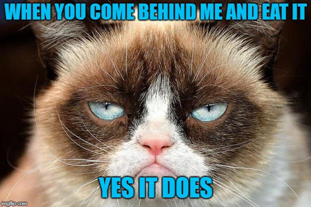 Grumpy Cat Not Amused Meme | WHEN YOU COME BEHIND ME AND EAT IT YES IT DOES | image tagged in memes,grumpy cat not amused,grumpy cat | made w/ Imgflip meme maker
