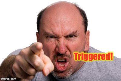 Angry Man Pointing | Triggered! | image tagged in angry man pointing | made w/ Imgflip meme maker