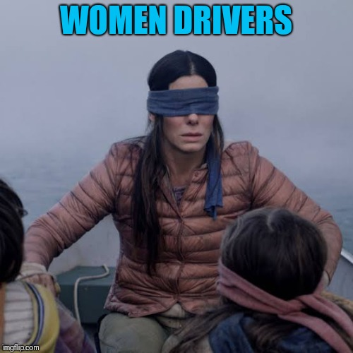 Birdbox | WOMEN DRIVERS | image tagged in birdbox | made w/ Imgflip meme maker