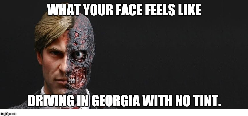 2 face | WHAT YOUR FACE FEELS LIKE DRIVING IN GEORGIA WITH NO TINT. | image tagged in 2 face | made w/ Imgflip meme maker