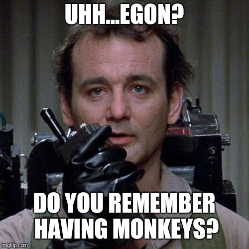 Ghostbusters  | UHH...EGON? DO YOU REMEMBER HAVING MONKEYS? | image tagged in ghostbusters | made w/ Imgflip meme maker