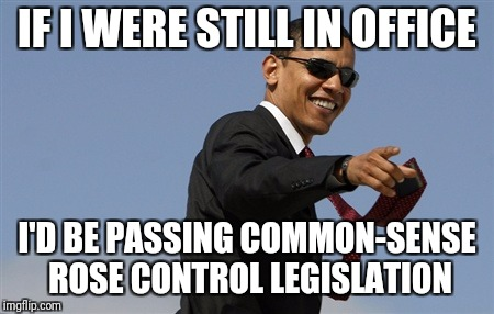 Cool Obama Meme | IF I WERE STILL IN OFFICE I'D BE PASSING COMMON-SENSE ROSE CONTROL LEGISLATION | image tagged in memes,cool obama | made w/ Imgflip meme maker