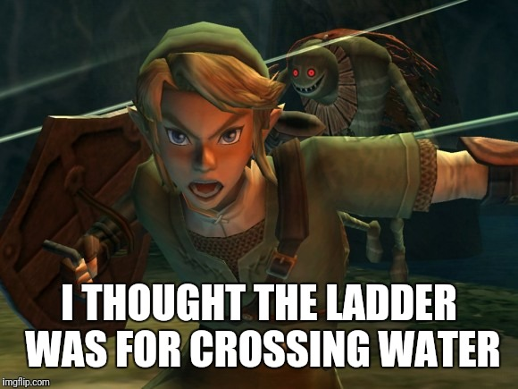 Link Legend of Zelda Yelling | I THOUGHT THE LADDER WAS FOR CROSSING WATER | image tagged in link legend of zelda yelling | made w/ Imgflip meme maker