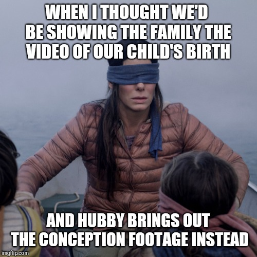 Bird Box Meme | WHEN I THOUGHT WE'D BE SHOWING THE FAMILY THE VIDEO OF OUR CHILD'S BIRTH AND HUBBY BRINGS OUT THE CONCEPTION FOOTAGE INSTEAD | image tagged in bird box | made w/ Imgflip meme maker