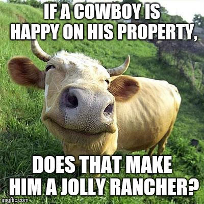 Cow | IF A COWBOY IS HAPPY ON HIS PROPERTY, DOES THAT MAKE HIM A JOLLY RANCHER? | image tagged in cow | made w/ Imgflip meme maker
