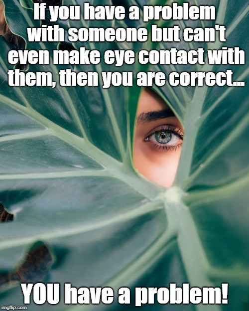 Eye See Your Point | If you have a problem with someone but can't even make eye contact with them, then you are correct... YOU have a problem! | image tagged in eye contact,memes,courage,cowards,eyes,conviction | made w/ Imgflip meme maker