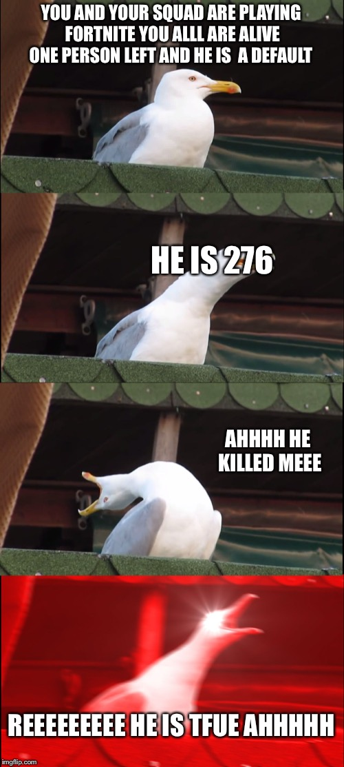 Inhaling Seagull Meme | YOU AND YOUR SQUAD ARE PLAYING FORTNITE YOU ALLL ARE ALIVE ONE PERSON LEFT AND HE IS  A DEFAULT HE IS 276 AHHHH HE KILLED MEEE REEEEEEEEE HE | image tagged in memes,inhaling seagull | made w/ Imgflip meme maker