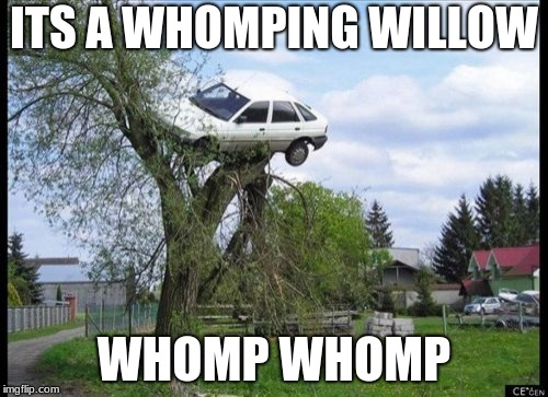 Whomp whomp | ITS A WHOMPING WILLOW WHOMP WHOMP | image tagged in memes,secure parking | made w/ Imgflip meme maker