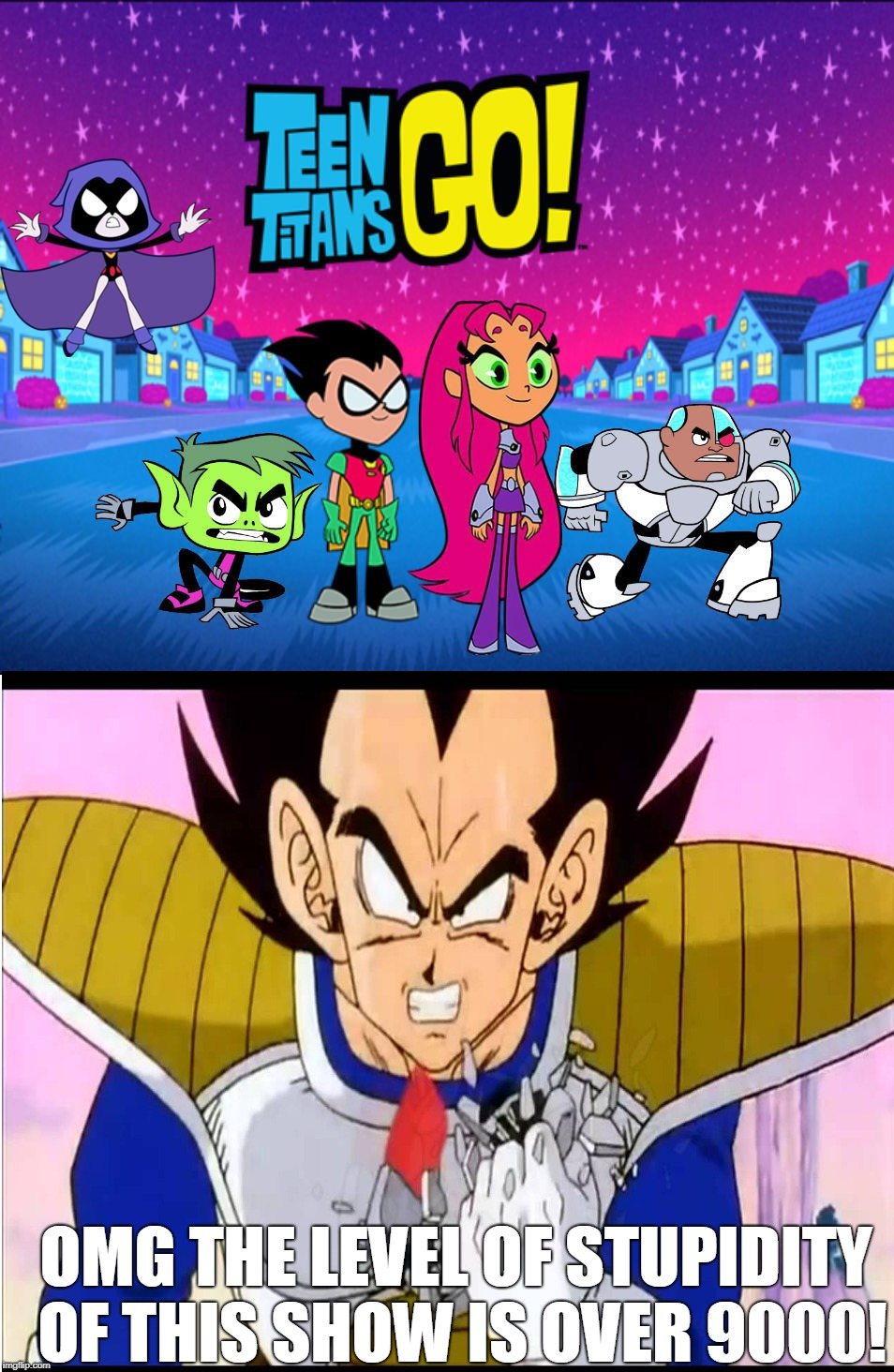 Vegeta Hates Teen Titans Go | OMG THE LEVEL OF STUPIDITY OF THIS SHOW IS OVER 9000! | image tagged in dragon ball z,memes,teen titans go,it's over 9000 | made w/ Imgflip meme maker