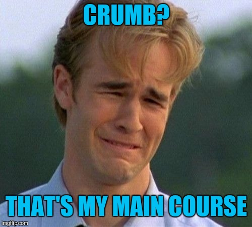1990s First World Problems Meme | CRUMB? THAT'S MY MAIN COURSE | image tagged in memes,1990s first world problems | made w/ Imgflip meme maker