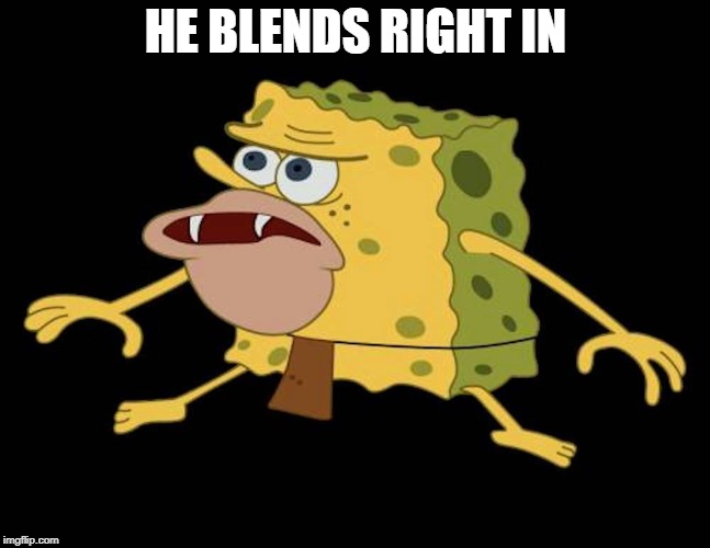 Spongegar | HE BLENDS RIGHT IN | image tagged in spongegar | made w/ Imgflip meme maker