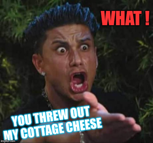 Jersey shore  | WHAT ! YOU THREW OUT MY COTTAGE CHEESE | image tagged in jersey shore | made w/ Imgflip meme maker