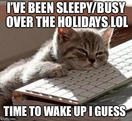 tired cat | I'VE BEEN SLEEPY/BUSY OVER THE HOLIDAYS LOL TIME TO WAKE UP I GUESS | image tagged in tired cat | made w/ Imgflip meme maker