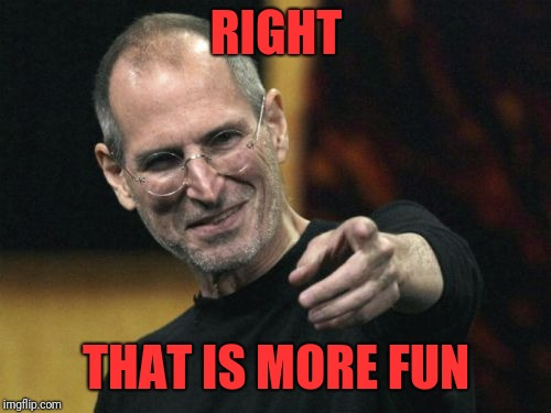 Steve Jobs Meme | RIGHT THAT IS MORE FUN | image tagged in memes,steve jobs | made w/ Imgflip meme maker