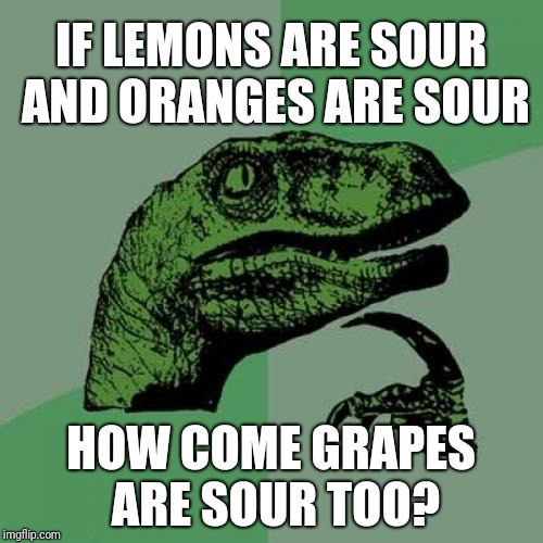 Philosoraptor | IF LEMONS ARE SOUR AND ORANGES ARE SOUR HOW COME GRAPES ARE SOUR TOO? | image tagged in memes,philosoraptor | made w/ Imgflip meme maker