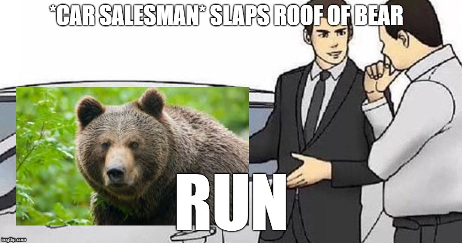 car salesman is in some deep trouble now, | *CAR SALESMAN* SLAPS ROOF OF BEAR RUN | image tagged in car salesman slaps roof of car | made w/ Imgflip meme maker