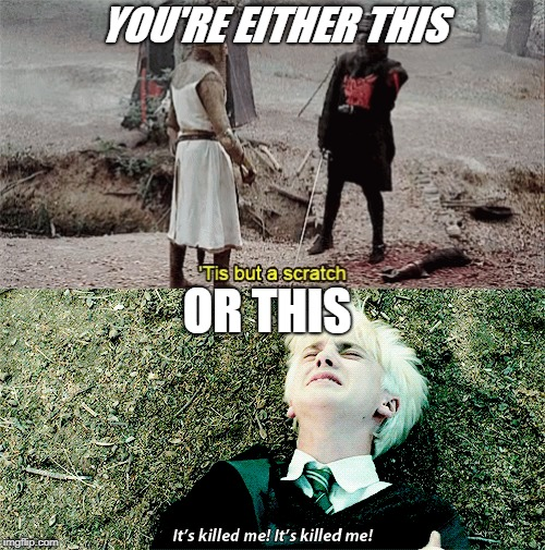 There are two types of people. | YOU'RE EITHER THIS OR THIS | image tagged in draco malfoy,monty python,two types of people,tis but a scratch | made w/ Imgflip meme maker
