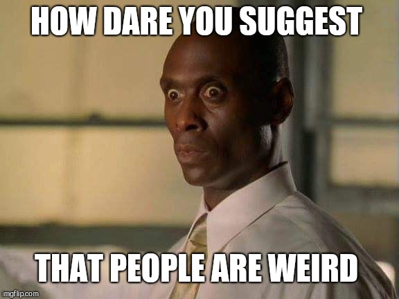 How dare you | HOW DARE YOU SUGGEST THAT PEOPLE ARE WEIRD | image tagged in how dare you | made w/ Imgflip meme maker