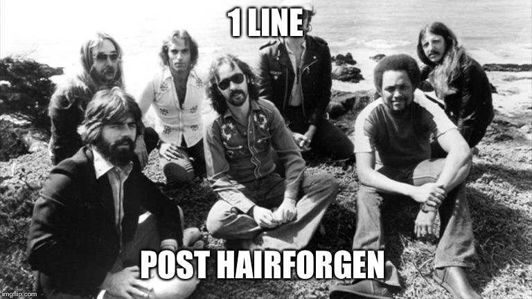 1 LINE; POST HAIRFORGEN | image tagged in doobie brothers,hippie,long hair | made w/ Imgflip meme maker