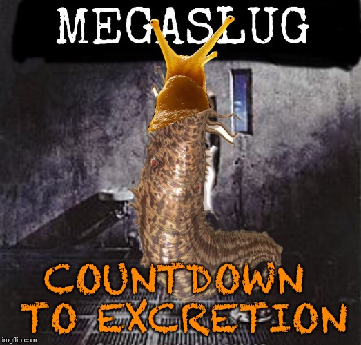 COUNTDOWN TO EXCRETION | made w/ Imgflip meme maker