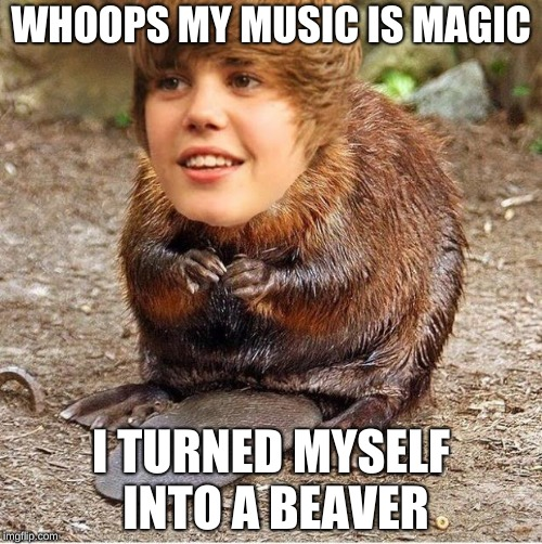 justin beaver | WHOOPS MY MUSIC IS MAGIC I TURNED MYSELF INTO A BEAVER | image tagged in justin beaver | made w/ Imgflip meme maker