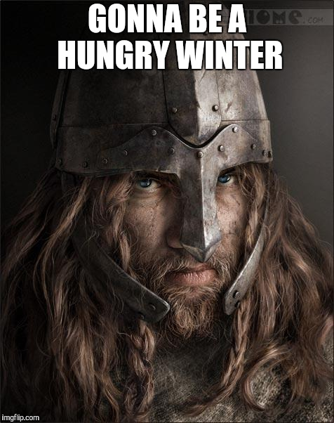 viking | GONNA BE A HUNGRY WINTER | image tagged in viking | made w/ Imgflip meme maker