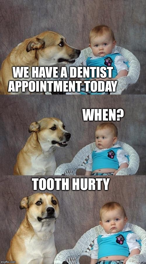 Dad Joke Dog Meme | WE HAVE A DENTIST APPOINTMENT TODAY WHEN? TOOTH HURTY | image tagged in memes,dad joke dog,dentist | made w/ Imgflip meme maker