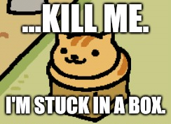 ...KILL ME. I'M STUCK IN A BOX. | image tagged in fred neko atsume | made w/ Imgflip meme maker