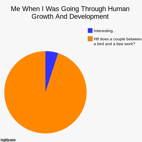 Me When I Was Going Through Human Growth And Development | Htf does a couple between a bird and a bee work?, Interesting... | image tagged in funny,pie charts | made w/ Imgflip chart maker
