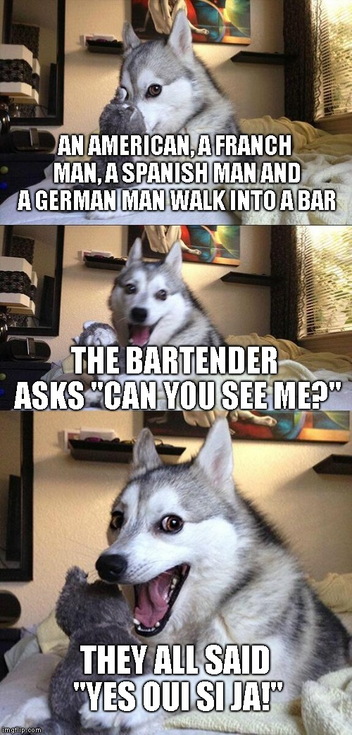 "Bad Pun Dog | AN AMERICAN, A FRANCH MAN, A SPANISH MAN AND A GERMAN MAN WALK INTO A BAR THE BARTENDER ASKS ""CAN YOU SEE ME?"" THEY ALL SAID ""YES OUI SI JA! 