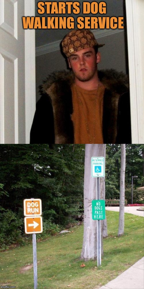 Since when does he obey signs? | STARTS DOG WALKING SERVICE | image tagged in memes,scumbag steve,dogs,walk,funny | made w/ Imgflip meme maker