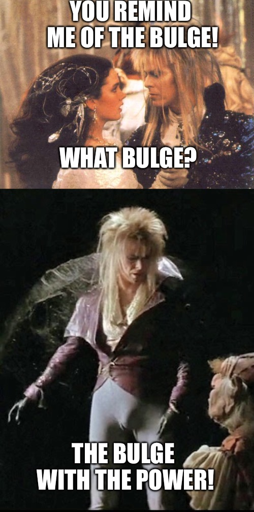 Bowie bulge  | YOU REMIND ME OF THE BULGE! WHAT BULGE? THE BULGE WITH THE POWER! | image tagged in david bowie,bulge,labyrinth | made w/ Imgflip meme maker