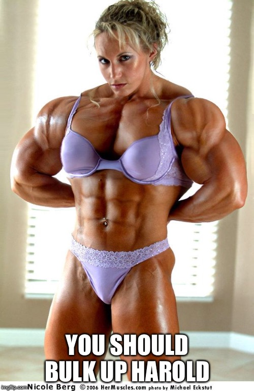 muscle woman | YOU SHOULD BULK UP HAROLD | image tagged in muscle woman | made w/ Imgflip meme maker