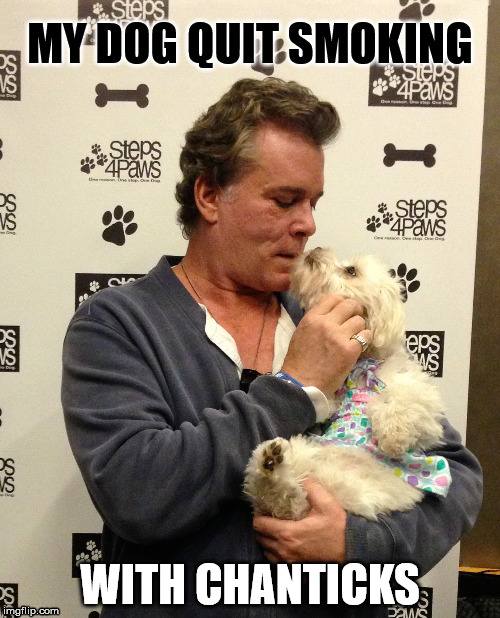MY DOG QUIT SMOKING WITH CHANTICKS | image tagged in ray liotta | made w/ Imgflip meme maker