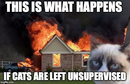 Burn Kitty | THIS IS WHAT HAPPENS IF CATS ARE LEFT UNSUPERVISED | image tagged in memes,burn kitty,grumpy cat | made w/ Imgflip meme maker